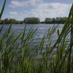 Ashford council looks to tackle anti-social behaviour at Conningbrook Lakes