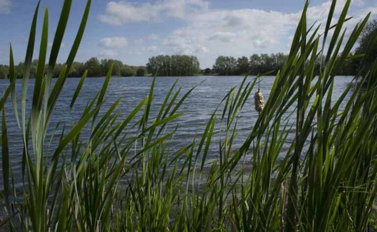 Ashford council looks to tackle anti-social behaviour at Conningbrook Lakes