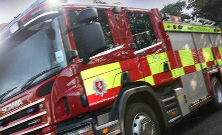 Horse hauled from water filled ditch near golf course in Deal